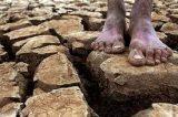 MP que aumenta benefícios a atingidos pela seca será votada na Câmara