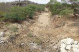 Produtor rural de Curaçá alerta sobre situação dramática vivida pelo sertanejo