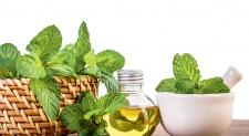 Benefícios do óleo de hortelã para o esôfago