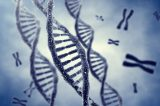 Teste genético pode impedir o surgimento do câncer; veja quem deve fazê-lo