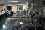 Diretora do Hospital das Clínicas prevê explosão de casos de covid-19 em janeiro