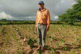Projeto vai desenvolver agricultura familiar em municípios do Baixo São Francisco