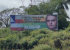 PT baiano aciona Ministério Público contra outdoors de Bolsonaro