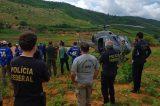 Operação da PF evita produção de 177 toneladas de maconha em Pernambuco