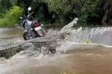 Ao fazer trilha, homem registra imenso crocodilo cruzando rio
